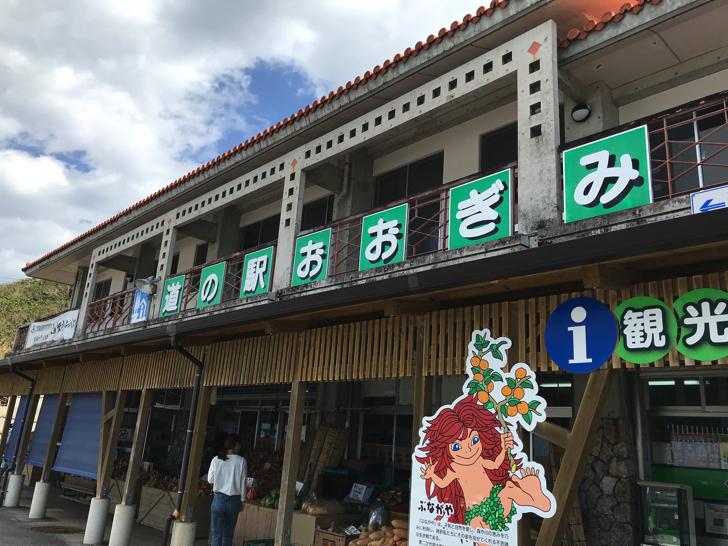大宜味村の道の駅では、地元で取れた野菜や果物を販売しています。おすすめは赤土大根やシークワーサーです。