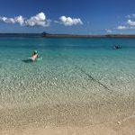 沖縄の海がきれいな理由