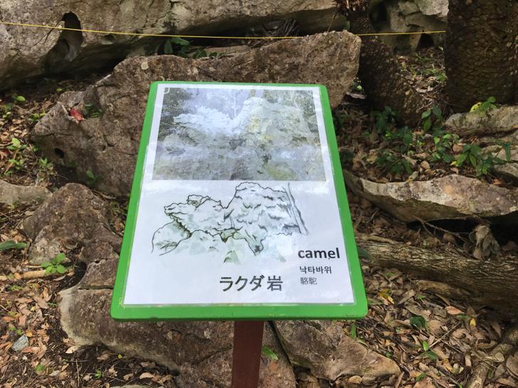 沖縄最大のパワースポット「大石林山」ラクダ岩