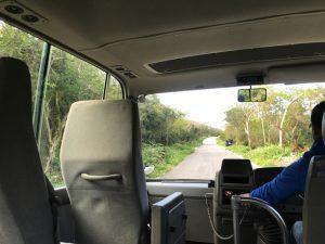 大石林山の送迎バス